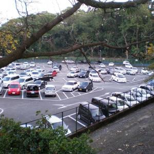 小田原城内野球場 跡地
