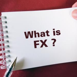 『初心者向け』FXとは?通貨とは?為替とは?女性トレーダーによる説明