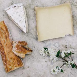 【座右の書】『チーズはどこへ消えた?』の名言と感想 変化を恐れず、受け入れよう