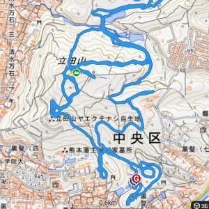 トレイル 立田山