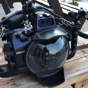 SEA&SEAのハウジングでシグマ15mmフィッシュアイに使うドームポートは?