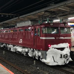 『北の国から…2021』雪化粧したEF81-141【長岡】