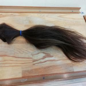 バッサリ断髪式!ショートヘア&春先取りカラー2020