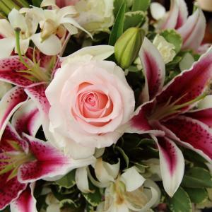 bloomeelifeは花がある生活をあなたに届けてくれます!