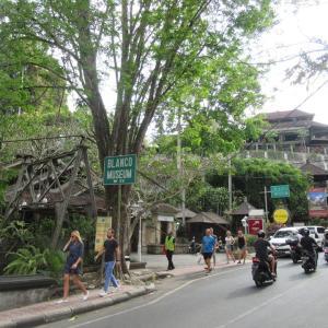 バリ島 ウブド:ブランコ美術館そばの小川