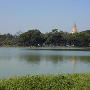 ヤンゴン ガンドージー湖ごゆるり散策
