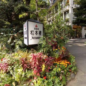 日比谷公園 大銀杏と10円カレーで有名な松本楼