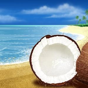 夏だ!ココナッツ味チョコだ!