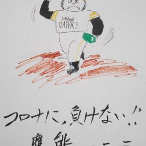 6月19日、熊が「檻」から解き放たれる…⁉