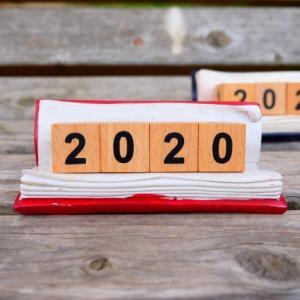 地方在住主婦が2020年に貯めたマイルを振り返りつつ来年の展望を考えてみた