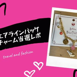 羽田空港に行かなくても飛行機のおもちゃが買える【丸彰チャーム当選レビュー】