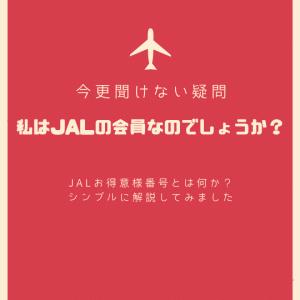 JALお得意様番号とは?私は登録している?確認方法をブログでシンプル解説