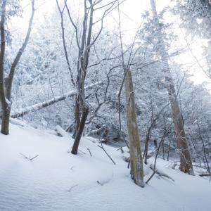 青空霧氷の綿向山① 2020.2.11
