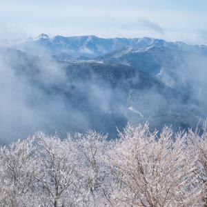 この冬最高の明神平① 2020.1.19