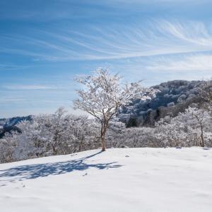 この冬最高の明神平② 2020.1.19