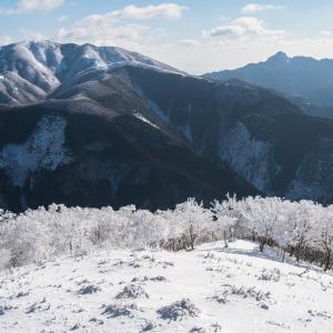 青空霧氷の綿向山③ 2020.2.11