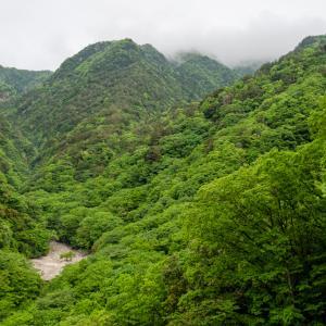 登山再開! 釈迦ヶ岳① 2020.5.23