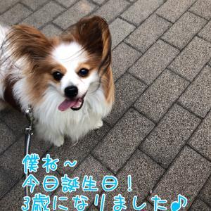 レオの誕生日!!