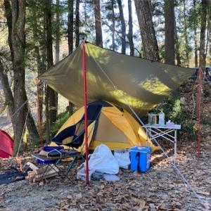 道志の森でデイキャンプ