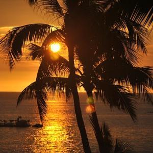 <夏休み、G家の海外旅行は、定番の、ハワイとグアムでした>