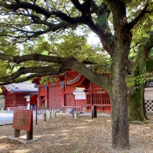 <東京大学、ようやく、令和2年度入学者歓迎式典の挙行へ>