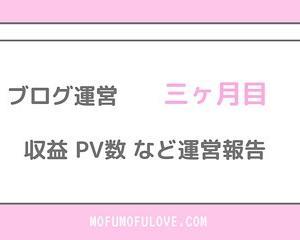 【運営報告】美容ブログ運営三ヶ月目の収益、PV数の報告