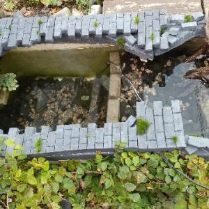 メダカ池を改造