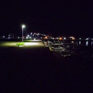 釣りシリーズ🎣新漁港へ❗️