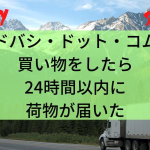 ヨドバシ・ドット・コムで買い物をしたら24時間以内に荷物が届いた