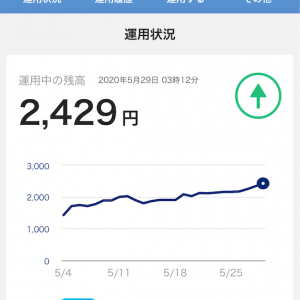 【PayPayボーナス運用記録】運用損益+25%を記録!