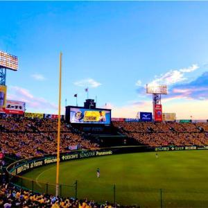 やっと…やっとプロ野球再開!2020プロ野球開催会場全スタジアム紹介&ちょっとしたスタジアムガイド。