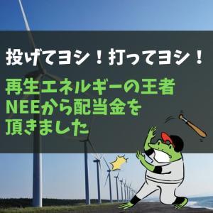 「投げてヨシ!打ってヨシ!」再生エネルギーの王者NEEから配当金を頂きました