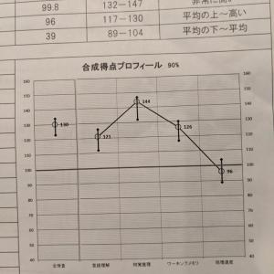 WISC検査の結果(長男、もうすぐ小1)