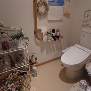 入院給付金  お気に入りの広いトイレ