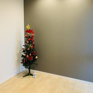 クリスマスツリー出しました🎄