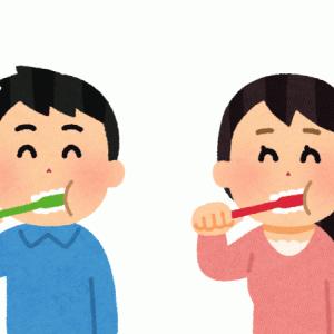 高い歯磨き粉を使ったら感動した話【ホワイトエッセンスでさらば着色汚れ】