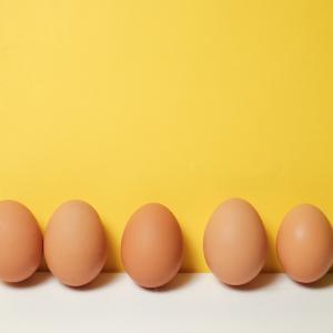 節約生活『低価格で栄養摂取』