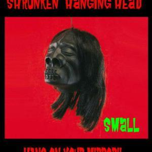★シュランケンヘッド Shrunken Head ! #アメ車 ルームミラー !
