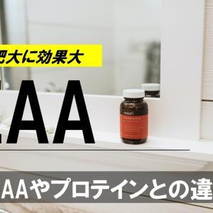 最新サプリメント!9種類の必須アミノ酸を含むEAAの効果。BCAAやプロテインとの違い