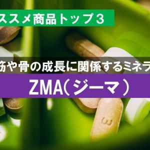 ZMA(ジーマ)|おすすめの人気商品|亜鉛・マグネシウム・ビタミンB6を一括摂取