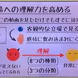 感情のコントロール力【手帳術】No.38
