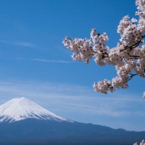 日本政府は国民を守ってくれるのか?