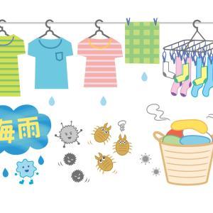 梅雨の湿気対策で快適生活を手に入れる!おすすめの除湿アイテム