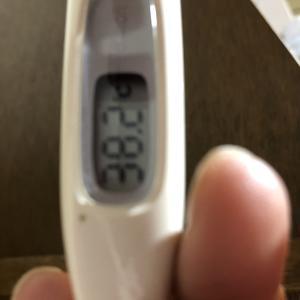 コロナワクチン2回目、熱が出ました。