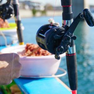 初心者でも釣れる『船釣りの始め方』簡単解説!
