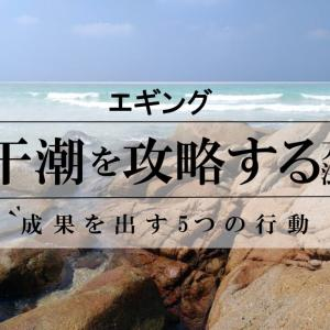 【エギング】干潮を攻略する方法【成果を出す5つの行動】絶対やるべき!