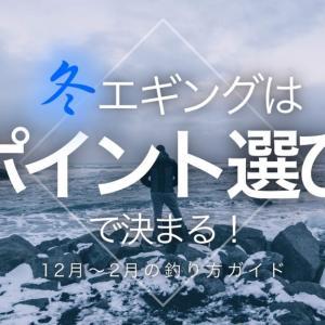 【12月~2月】冬エギングの釣り方ガイド【釣果はポイント選びで決まる!】