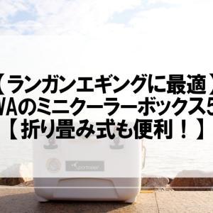 【ランガンエギングに最適】DAIWAのミニクーラーボックス5選!【折り畳み式も便利!】