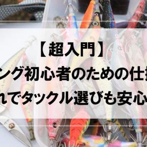 【超入門】エギング初心者のための仕掛け【これでタックル選びも安心!】