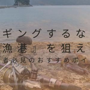 エギングするなら『漁港』を狙え!初心者必見のおすすめポイントを紹介!